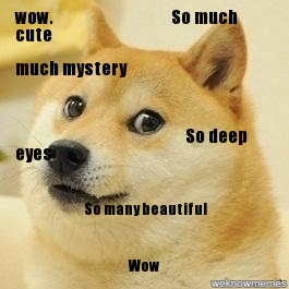lolspeak meme speak doge editing service