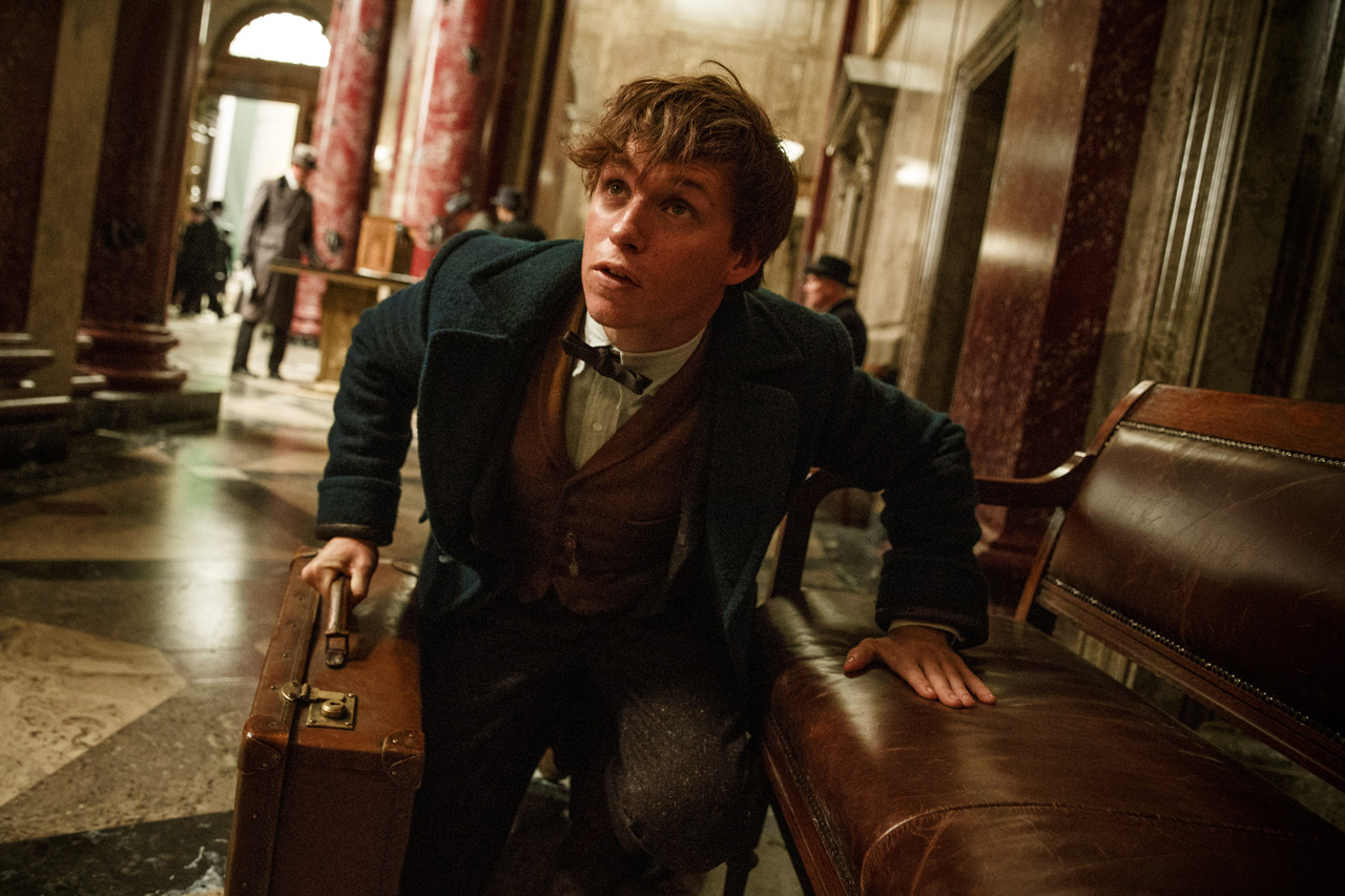 fantastic beasts and where to find them movie still newt scamander